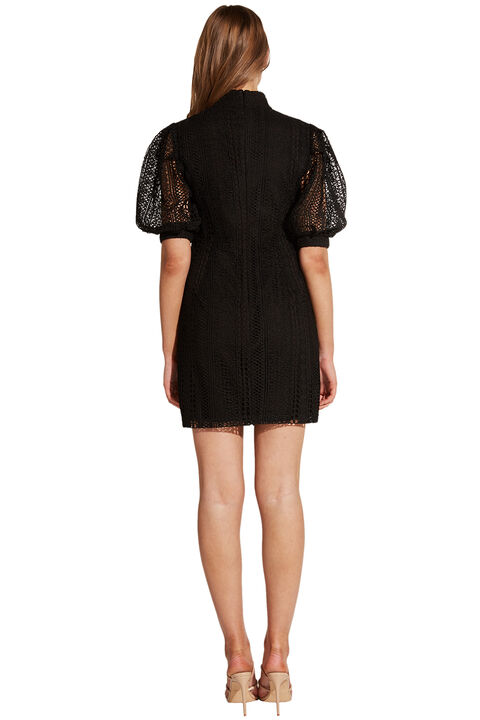 BROOKE LACE DRESS in colour CAVIAR