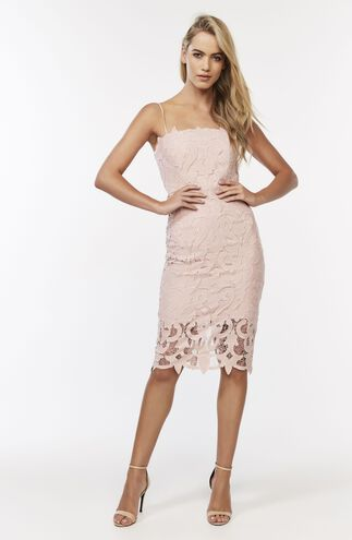 LINA LACE DRESS in colour PALE DOGWOOD