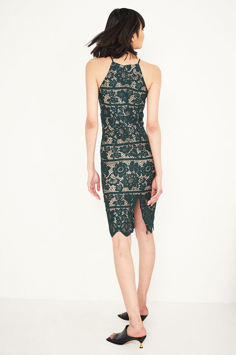 MILA LACE DRESS in colour GREEN GABLES