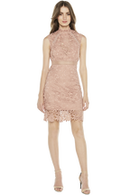 PARIS LACE DRESS. in colour PEACH BEIGE