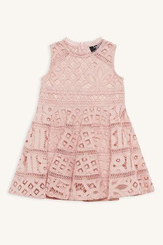 ELISE LACE DRESS in colour MISTY ROSE