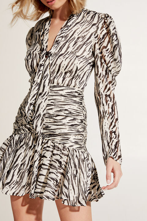 ZEBRA PRINTED DRESS in colour WIND CHIME