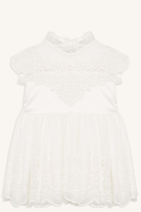 SCALLOP LACE DRESS in colour BRIGHT WHITE