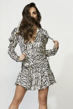The Zebra Printed Dress in colour