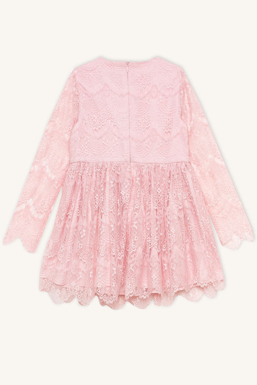 TWEEN GIRL GERTRUDE LACE DRESS in colour POTPOURRI
