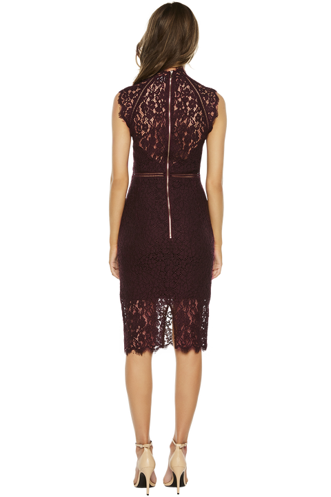 LACE PANEL DRESS in colour WINETASTING
