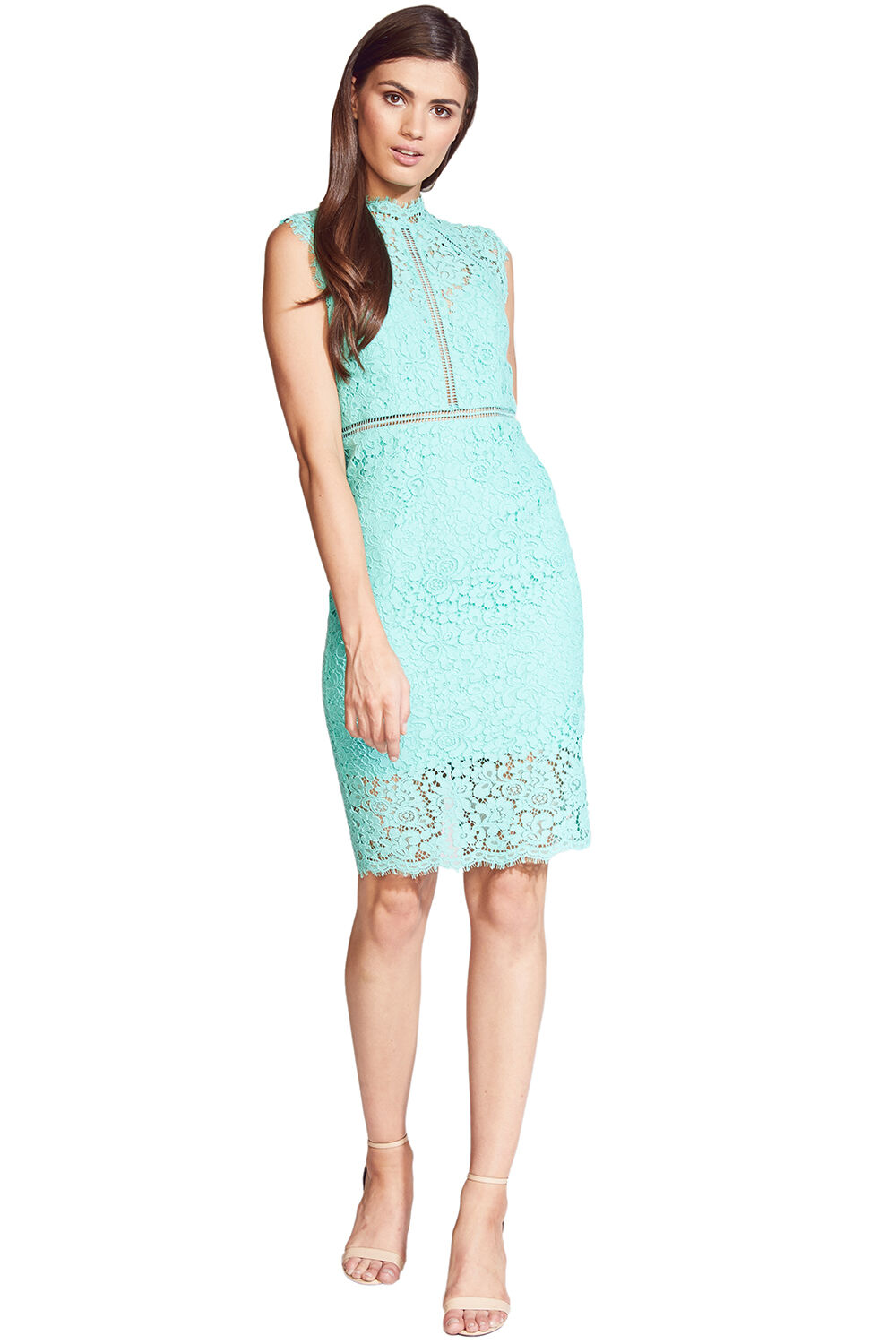 LACE PANEL DRESS in colour CABBAGE