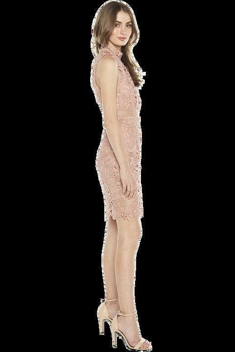 PARIS LACE DRESS. in colour PEACH BEIGE