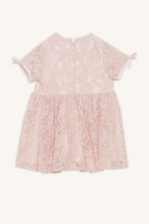 MILLY LACE DRESS in colour PRIMROSE PINK