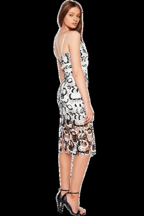 COCO LACE DRESS in colour CAVIAR