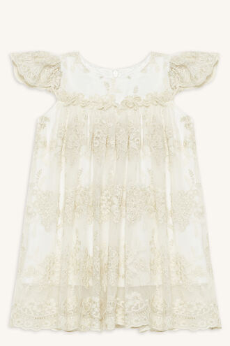 ORIEL LACE DRESS in colour FROSTED ALMOND