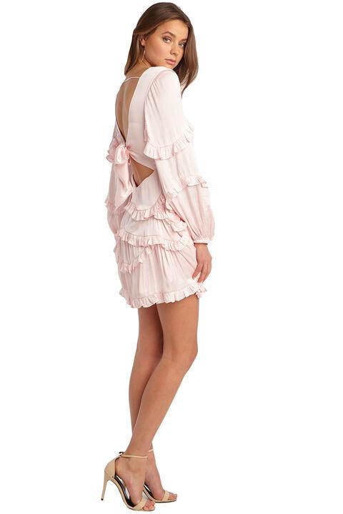 NALA FRILL DRESS in colour PALE DOGWOOD