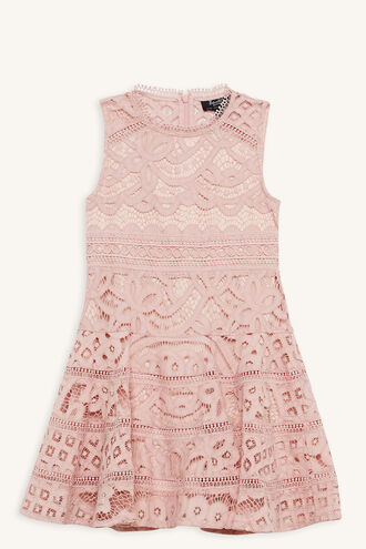 ELISE LACE DRESS in colour MISTY ROSE