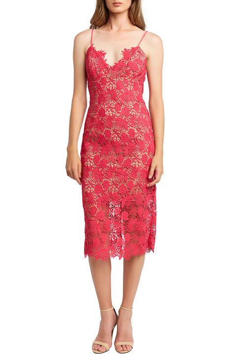 TAYLA LACE DRESS in colour BEETROOT PURPLE