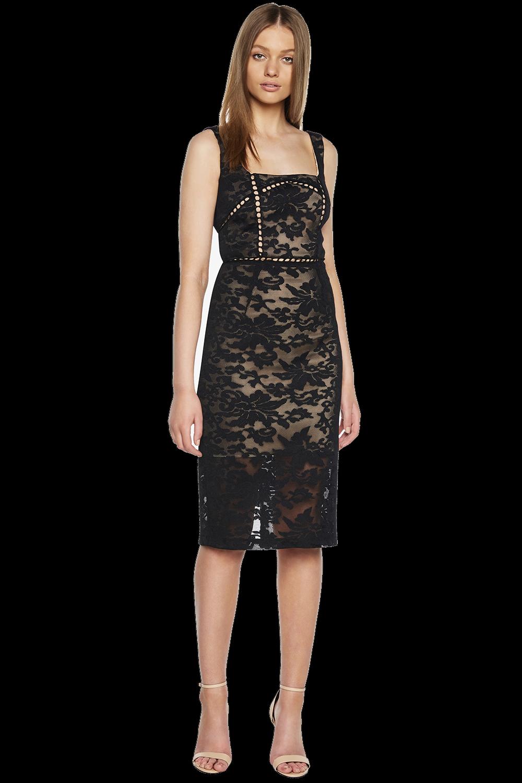 STELLA LACE DRESS in colour CAVIAR
