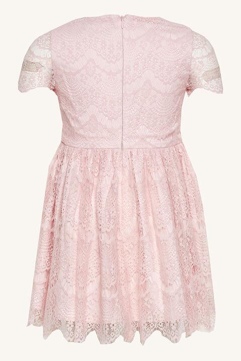 MARGOT LACE DRESS in colour POTPOURRI