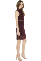 PARIS LACE DRESS in colour BURGUNDY