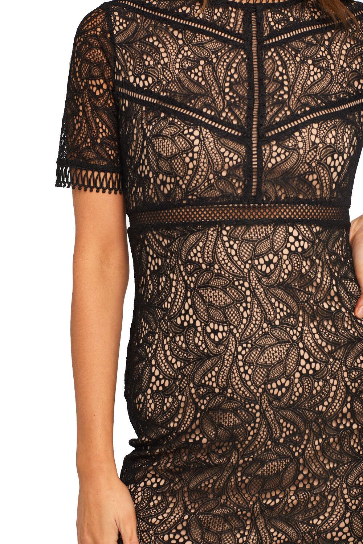 THEODORA LACE DRESS in colour CAVIAR