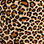 Select Color: LEOPARD